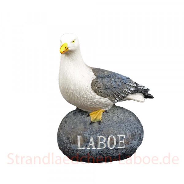 Möwe auf Stein Laboe