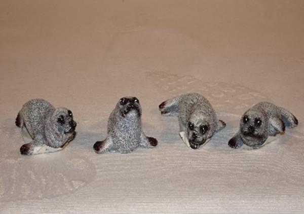 Seehunde gut mini